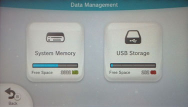 The Wii U supports external USB storage.
